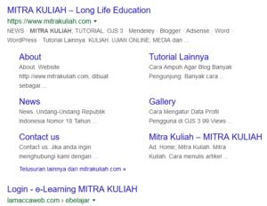 Cara Terbaru Membuat Sitelink Pada Search Engine Google Untuk Meningkatkan Performa SEO Website