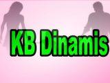 KB-Dinamis